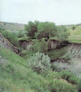 Приволжская возвышенность на карте России Где находится рельеф полезные ископаемые природные достопримечательности